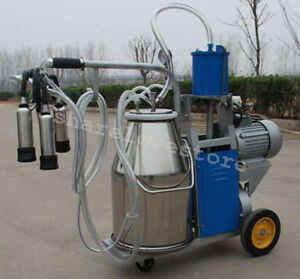 Usa Electric Milking Machine Cows 25l Bucket Wheels Piston Vacuum Pump Ajustable