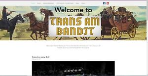 Trans Am Bandit com Burts Bandit com Domain Names Car Enthusiast Web Site