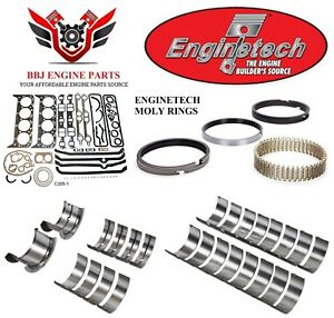 Enginetech Chevy Sbc 305 5 0 Re Ring Rebuild Kit With Moly Rings 76 85