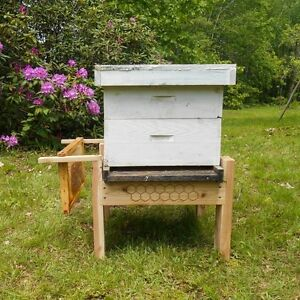 Beehive Stand Made Of Cedar Bee Keeping Supplies Apiary Bee Hive