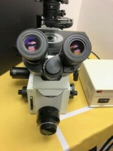 Olympus Microscope Ix70 Fluorescence And Dic