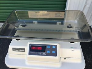 Olympic Pediatric Infant Scale Combined With Rolling Cabinet
