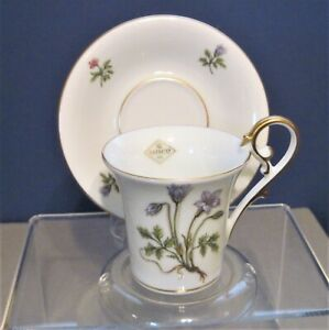 Vintage Danity Demitasse Cup Saucer Set Kaiser Germany Wildflowers Handpainted