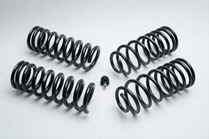 Ford Racing Lowering Springs Front Rear Silver black Ford Mustang