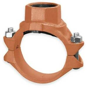 Gruvlok 0390175123 Clamp t W fnptbranch 2 5x1 5 iron 500psi