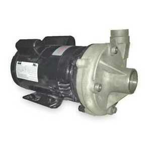 Dayton 2zxk8 Stainless Steel 1 Hp Centrifugal Pump 115 230v