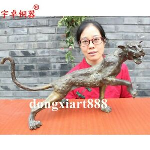 53 Cm Chinese Ancient Pure Bronze Copper Catamount Cougar Leopard Panther Statue