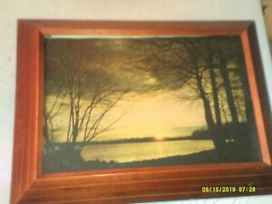 Large Vintage Light Up Wall Hanging Picture River Front Scene 3d Cherry Color Wo