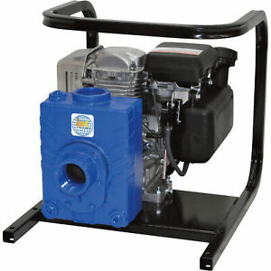 Ipt Cast Iron Ag water Pump 127cc Engine 2in Ports 2ag4acv
