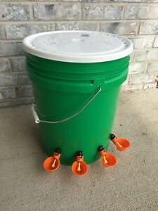Fall Special Automatic Chicken Poultry Waterer Feeder Lucky Green 4 Orange Cups