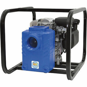 Ipt Cast Iron Semi trash Pump 160cc Engine 3in Ports 3gs5qcv