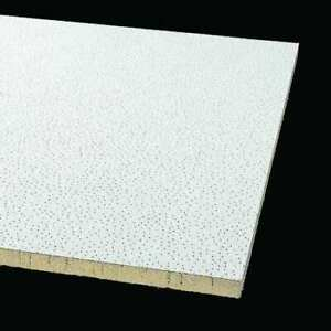 Armstrong 871b 48 L X 24 W Clean Room Ceiling Tile