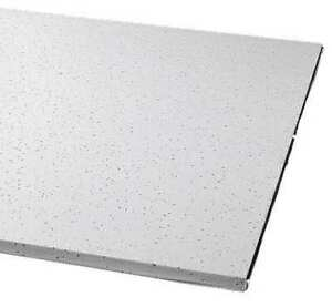 Armstrong 1721b 48 L X 24 W Clean Room Ceiling Tile