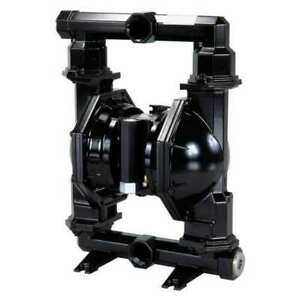 Aro Pd20a acp aaa b Double Diaphragm Pump Cast Iron Air Operated