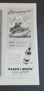 Original 1942 Print Ad BLACK & WHITE Whiskey Still Carrying On Westies Terriers