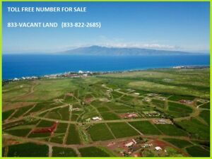 For Sale Vanity Toll Free Number Real Estate Land Business 1 833 vacant Land