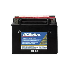 Acdelco 88863880 Battery Powersports Agm 12 Volt 245 Cca Bombardier Each