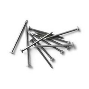 17 X 1 Stainless Steel Wire Nails 2 Oz Pack