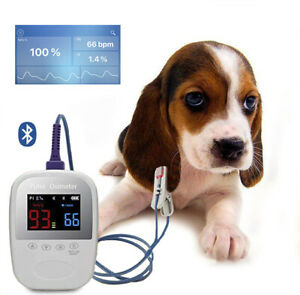 Handheld Bluetooth Pet Animal Veterinary Spo2 Pulse Oximeter Monitoring Fda ce