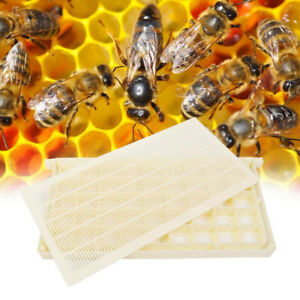 Beekeeping Tool Bee Queen Box Portable Apiculture Rearing Cup Kit Garden Storage