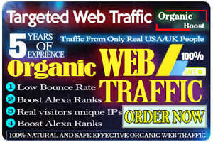 Adsense Safe Genuine Organic Web Traffic With Low Bounce Rate With Analytics