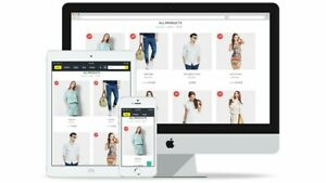 Ecommerce Dropshipping Website With Free Domain And Hosting