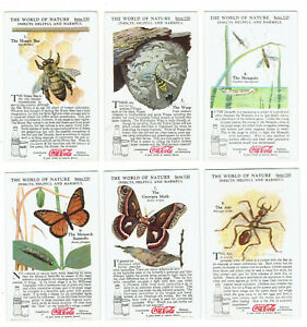 Coca Cola 1930s The World of Nature Series VIII - 10 Cards - Insects  Helpful an