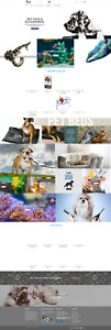 Prebuilt Turnkey Dropshipping Website Pets Care us Suppliers