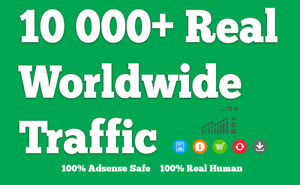 10 000 Real Human Website Worldwide Keyword And Niche Targeted Traffic