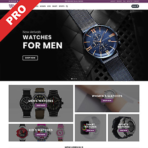 Dropshipping Website Watches Store Profitable Business For Sale