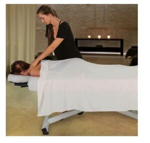 Hydraulic Lift Massage Table Earthlite Ellora