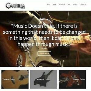 Fully Stocked Dropshipping Guitar Website Business For Sale Domain Hosting