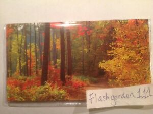 1 2021 2022 Fall Forest Two Year Planner Pocket Calendar 2 Year Datebook Gift