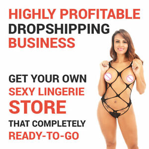 Lingerie Store Automated Dropshipping Website Profitable Business For Sale