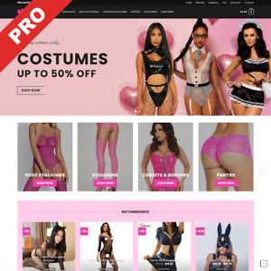 Professional Dropshipping Store Sexy Lingerie Profitable Website Business