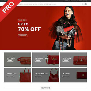 Bags Store Premium Dropshipping Website Free Domain And Hosting