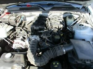 Automatic Transmission 5 Speed 6 245 4 0l Sohc Fits 05 06 Mustang 16886843