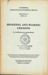 Vintage 1943 Booklet Brooding And Rearing Chickens Ag Extension Service