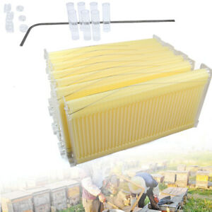 7 Pieces Automatic Raw Frame Honey Beekeeping Beehive Hive Frames Harvesting Usa
