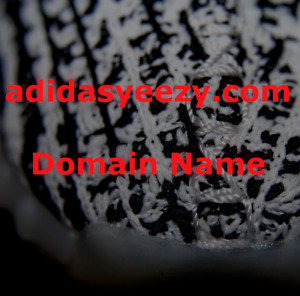 Adidasyeezy com Domain Name Sneakers Fashion Clothes