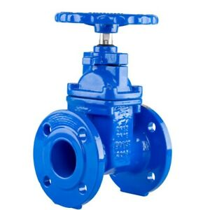 2 5 Resilient Seated Gate Valve 200psi Avk