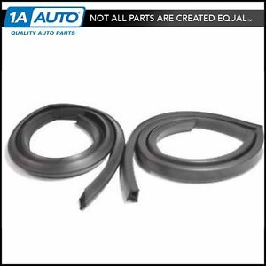 Roofrail Roof Rail Weatherstrip Seals Pair Set Of 2 For 71 74 Amc Javelin