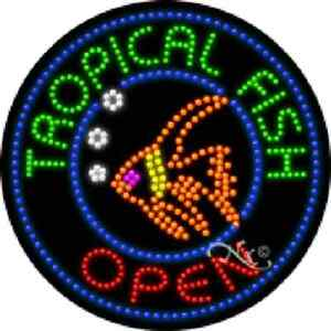 Tropical Fish Open High Impact Eye catching Led Sign