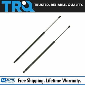 Tailgate Lift Supports Shock Struts Pair Set Kit For Buick Chevy Pontiac Saturn