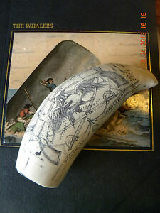 Scrimshaw Sperm Whale Tooth Resin Replica Vicksburg 8 Inch Long Great Details