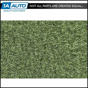 1969 70 American Motors Amx 869 willow Green Passenger Carpet For Auto Trans