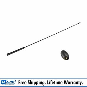 Oem Antenna Base Mast Assembly Roof Mounted Set For Ford Focus Mercury Cougar