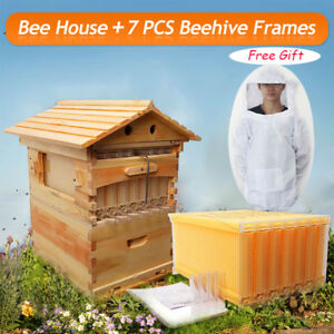 7pcs Upgraded Auto Honey Hive Beehive Frames Beekeeping Super Brood Box