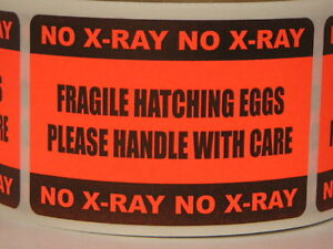 250 Sticker Labels Fragile Hatching Eggs Handle Care No X ray 2x3 Fluor Red
