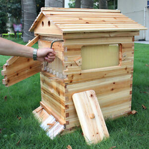 Wooden Honey Beekeeper House Brood Box For 7 Auto Bee Hive Frames